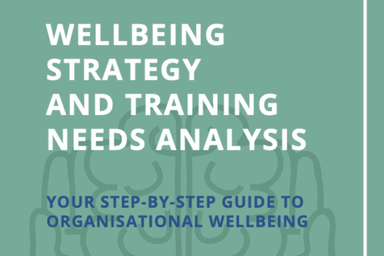 Healthy Work Company Wellbeing Strategy & Training Needs Analysis Toolkit